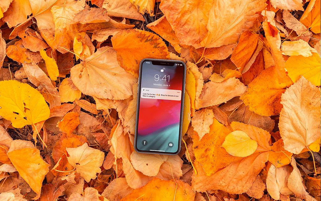 App Commerce news blog header, phone on autumn leaves